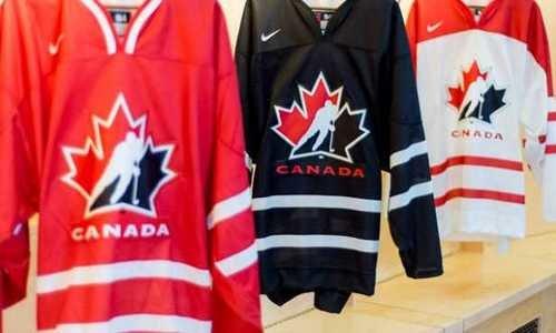 Кубок вызова 2015, хоккей